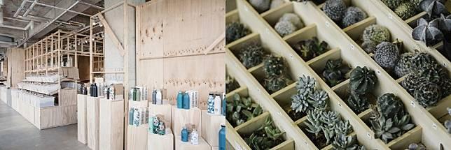 新店設有園藝部,提供不同的植物和園藝工具,喜歡園藝的朋友不要錯過。(互聯網)