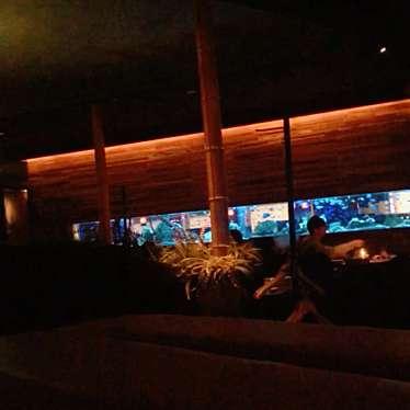 実際訪問したユーザーが直接撮影して投稿した新宿アジア・エスニックアクアリウムダイニング 新宿ライムの写真