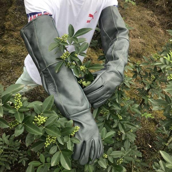 牛皮防刺手套 專業園林園藝修剪 摘剝板栗花椒月季仙人掌防刺防扎