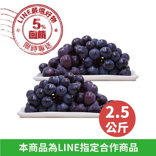 【巨峰葡萄】產銷履歷《渾圓飽滿/2.5kg,5包入》