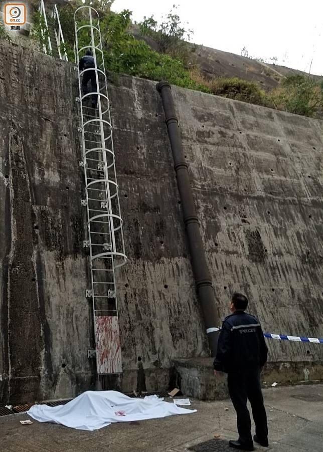 警員沿梯爬上山坡調查。(胡德威攝)