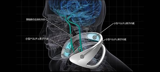 Cómodo gear透過將頸部血液冷卻從而達致降溫效果。(互聯網)