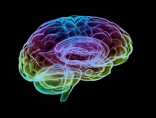 5 Fakta Menakjubkan Tentang Otak Manusia yang Sayang Jika Dilewatkan