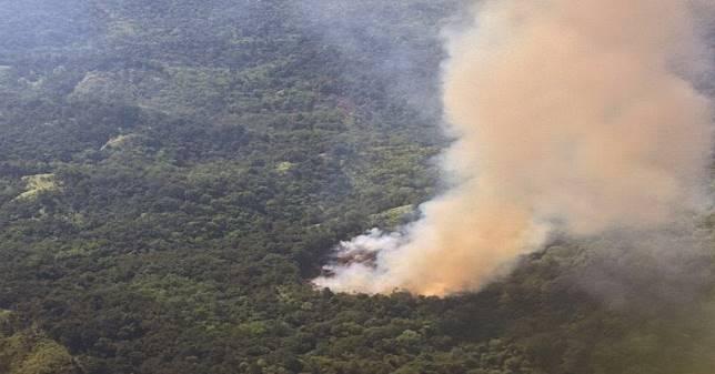 7 Fakta Kebakaran Hutan, Bayi Meninggal hingga Diduga Ada Unsur Kesengajaan
