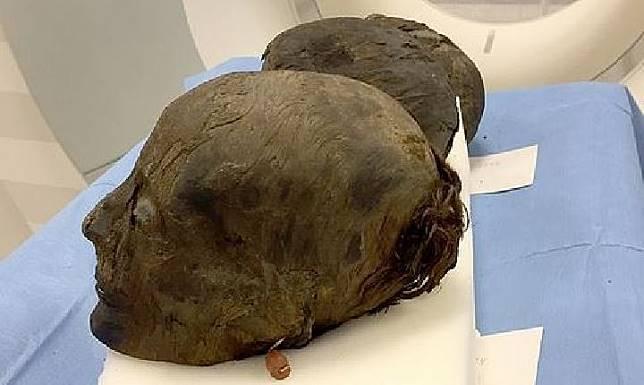 Rambut mumi Mesir kuno bertahan selama 3.000 tahun. Kredit: Kurchatov Institute/east2west.ne