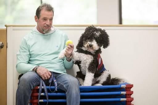 ทหารผ่านศึก 9/11 และสุนัขบำบัดของเขา ที่ศูนย์ฝึกสุนัข POW ในลองไอส์แลนด์ Johannes EISELE / AFP
