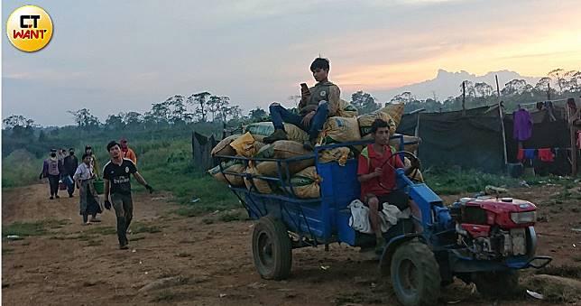 【寮國撩落去3】波羅芬高原盛產咖啡 了解寮國「人」最好的地方
