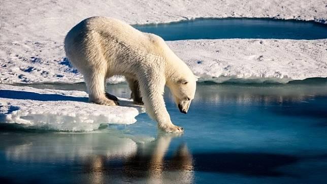 Laporan terbaru menyebutkan risiko yang ekstensif tentang peningkatan temperatur global - Getty Images