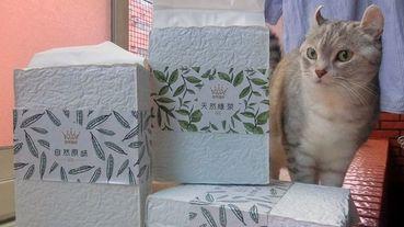 [寵物]用原料自然安心的豆腐砂呵護人與貓的呼吸道健康 路易貓砂純天然豆腐砂