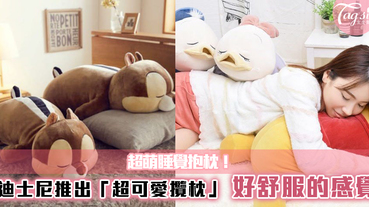 迪士尼粉絲們必買!超可愛「睡覺抱枕」,沒男朋友!?各個受歡通的卡通~讓你抱著睡!