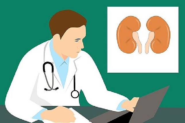 Ilustrasi penyakit ginjal (Pixabay.com)