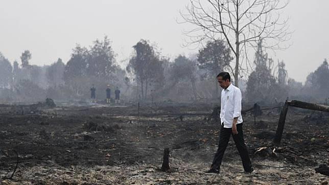Presiden Joko Widodo meninjau penanganan kebakaran lahan di Desa Merbau, Kecamatan Bunut, Pelalawan, Riau, Selasa, 17 September 2019. ANTARA