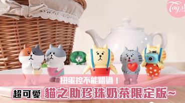 扭蛋控不能錯過!超可愛,喵之助珍珠奶茶限定版~萌翻天!