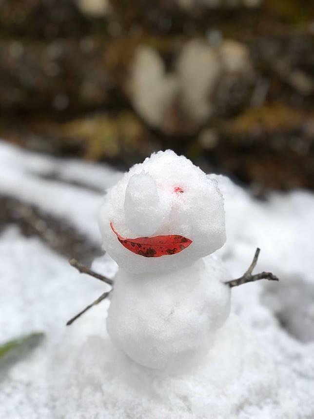 ▲遊客在阿里山上堆起可愛的小雪人。(圖/讀者林小姐提供)