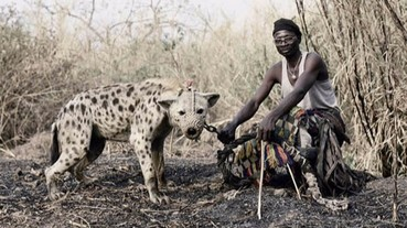 奈及利亞人所養的寵物太過凶猛! 簡直是電影漫畫才看的到...