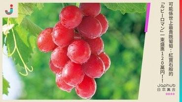 可能係世上最貴既葡萄紅寶石般的「ルビーロマン」一束盛惠120萬円