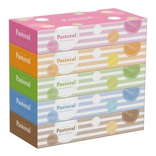 大王製紙 パストラルティッシュ 160W×5パック