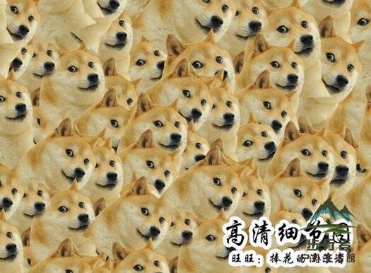 doge神煩狗500木質成人拼圖1000片 喪心病狂魔性精神污染二胡卵
