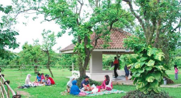 22 Tempat Wisata Di Bogor Yang Hits Untuk Kamu Kunjungi Saat