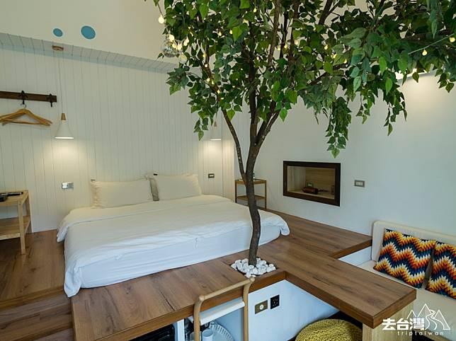 其中一間房間,竟然驚喜地長出一棵樹!