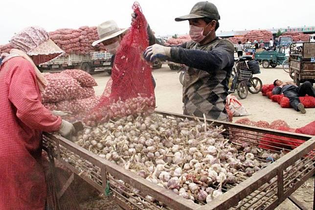 China selenggarakan pameran bawang putih di sentra produksi