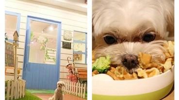 與毛小孩一起大口吃!十大超夯狗狗餐廳