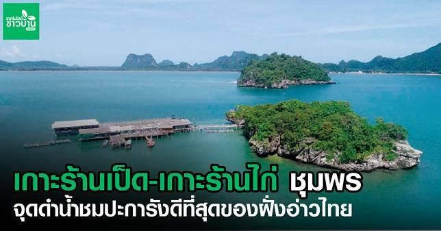 8 เกาะเป็ด