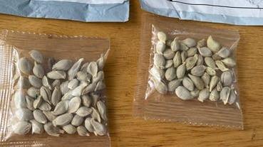 中國不明種子包裹頻傳!Amazon 開始禁外國賣家銷售植物