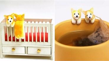 連喝茶都不放過你!這個超萌「柯基杯緣子」絕對秒殺你的心!