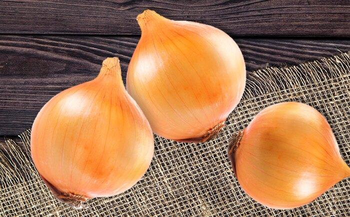 【輕煮配】美國進口大洋蔥/3顆