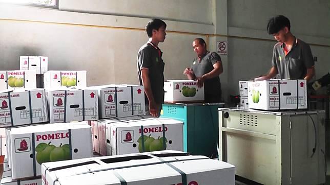 ไวรัสโควิด-19 หลอน! จีนชะลอสั่งซื้อส้มโอเกษตรกรพิจิตร