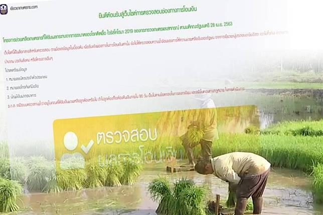 วันนี้เกษตรกรมีเฮอีก6.2แสนราย รอรับเงินเยียวยา5พัน