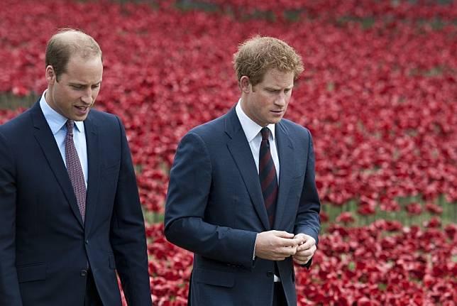 Pangeran William dan Pangeran Harry sepakat berbagi hasil Diana Memorial Fund.