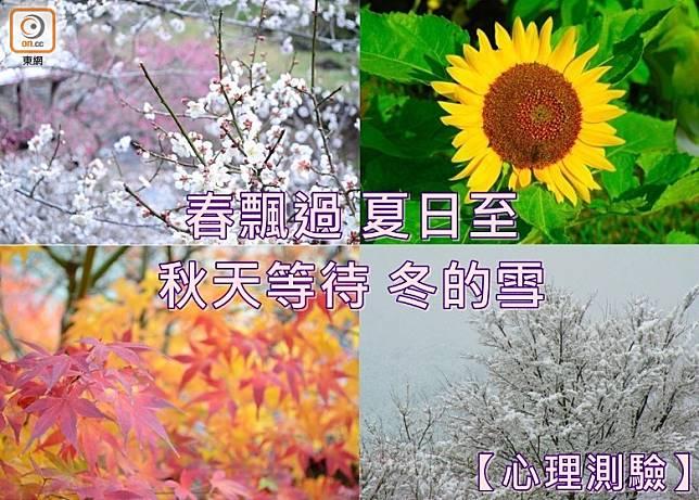 春飄過、夏日至、秋天等待、冬的雪,一年四季剛剛好,你正好是哪一季?(設計圖片)