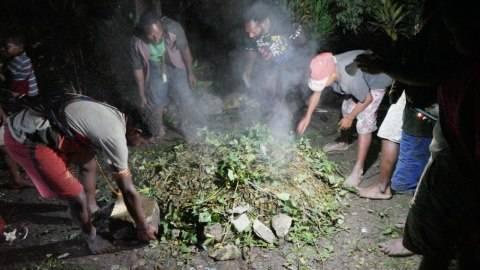 Kapolda Papua Ungkap Ada 6 Kelompok Aktif KKB di Wilayah Pegunungan  (2)