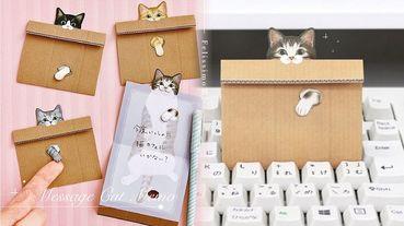 貓奴必收!Felissimo貓部推出「貓咪Memo卡片」,伸出洞的小腳超級療癒!