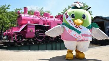 [黃金週期間限定]粉紅色的蒸汽機關車