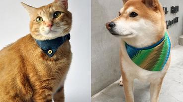 【養寵物懶人包】養寵物好處、養寵物準備、好養寵物總整理