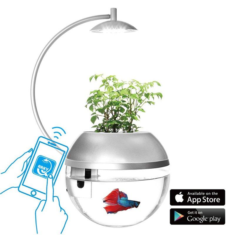 香草與魚X智能版Herb&Fish X Connect - 京都銀限量版