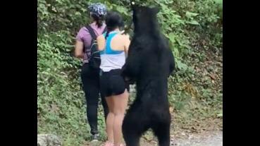 生態公園健行,遇到好奇小熊淡定合影留念