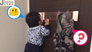 可愛寶寶跟貓咪探險 寶寶:「您看到了嗎?」