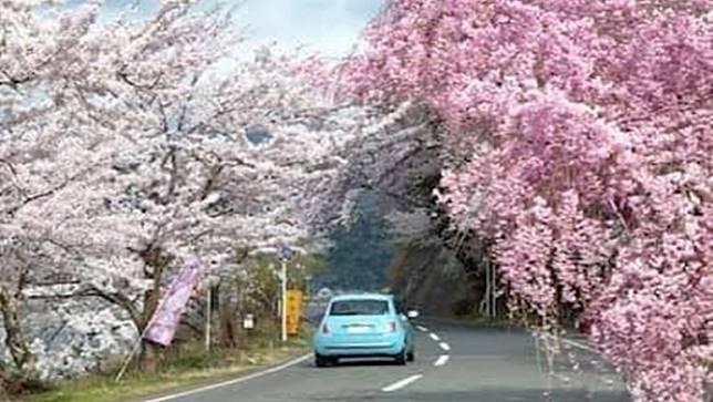 สถานทูตไทยในญี่ปุ่น เตือน ขับรถต้องมีใบขับขี่สากลโทษหนัก-ห้ามใช้โทรศัพท์ขณะขับ