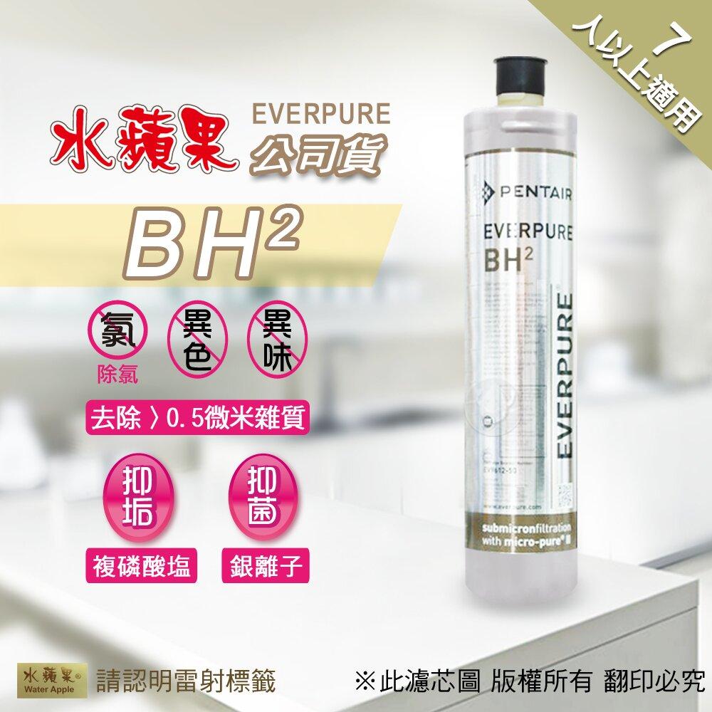 BH升級版-增加銀離子抑菌配方含複磷酸鹽配方,具有抑制石灰質、減少水垢功能美國進口超環保!超輕巧體積小不佔空間安裝、更換濾芯迅速簡易可適用於Everpure淨水器