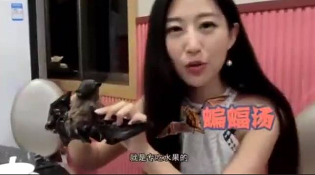 'Sorry about the tasty bat': Chinese online host apologises for travel show dining advice as Wuhan virus spreads