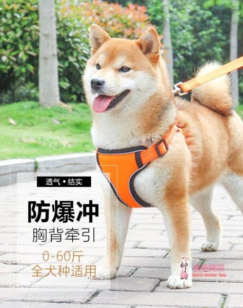 狗狗牽引繩背心式寵物胸背帶大型犬柯基遛狗繩項圈小型犬泰迪用品