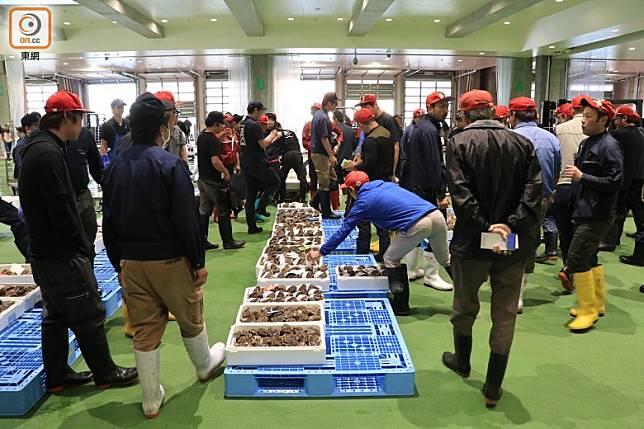 過去的6月初,境港魚市場完成了部分翻新工程,包括拍賣場地移師到舖滿綠色防滑鋼沙地面的場館。(李家俊攝)