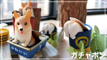 眾所期待的「柯基罐罐」終於要上市啦!5款柯基躲在罐罐的造型,呆萌形象認真好可愛