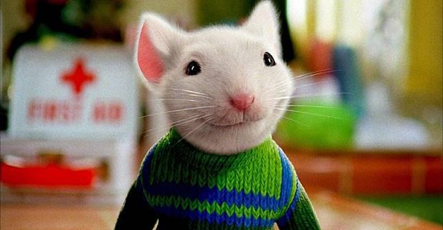 《一家之鼠超力仔》以CG技術製作出一隻栩栩如生、擬人化的小老鼠Stuart。(互聯網)