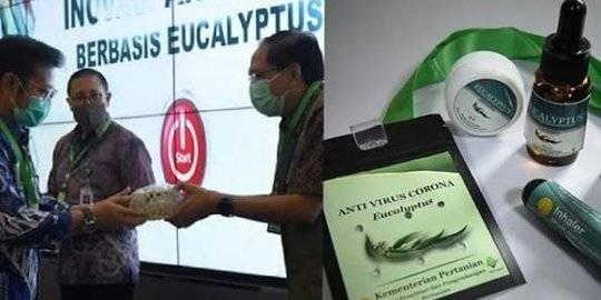 Kementan luncurkan antivirus corona berbahan eucalyptus. Instagram/@Balaitani