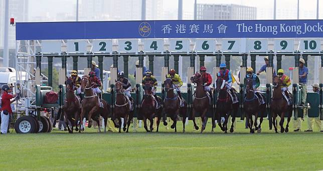 Who is the best horse in Hong Kong right now?